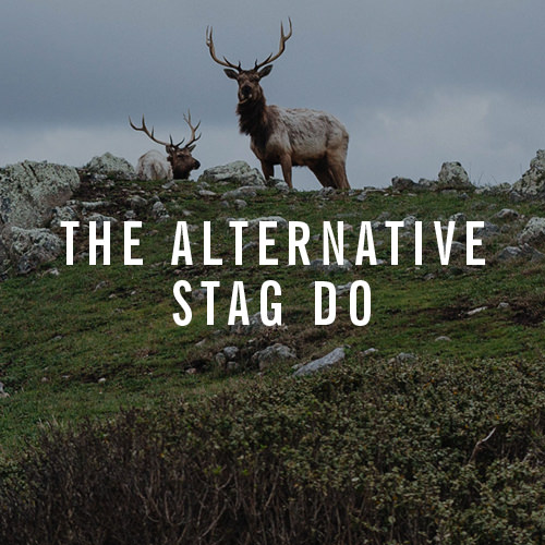 The Alternative Stag Do