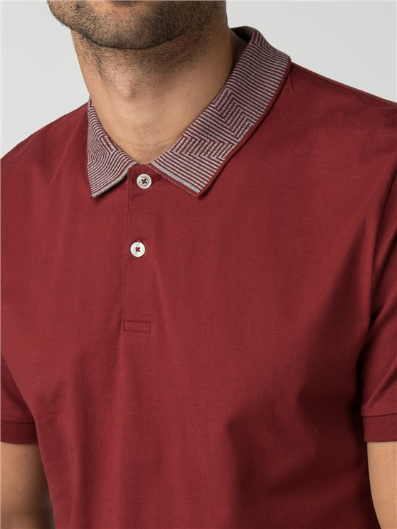 Intarsia Collar Polo- currently unavailable